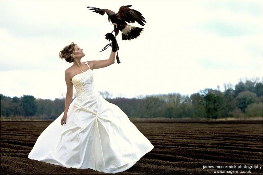 Wedding11607608159