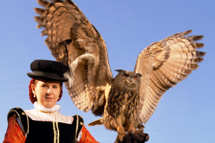 owlwings1607610413