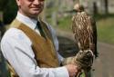 Falconry Lessons in Scotland