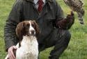 Wales Falconry Beginner's Course